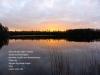 Fantebosjön solnedg vass bild i datan