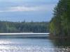 Skogssjö i Bergslagen 2021-05-19
